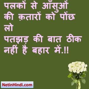 Bahaar status in hindi fb, best hindi shayari on Bahaar, new hindi shayari on Bahaar, 2 line hindi shayari on Bahaar पलकों से आँसुओं की क़तारों को पोंछ लो  पतझड़ की बात ठीक नहीं है बहार में.!!