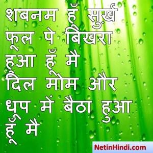 Shabnam images dpz, Shabnam images dps, Shabnam dp for whatsapp,शबनम हूँ सुर्ख़ फूल पे बिखरा हुआ हूँ मै  दिल मोम और धूप में बैठा हुआ हूँ मै
