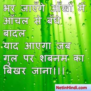 Shabnam shayari dp, Shabnam whatsapp status, Shabnam whatsapp status in hindi, whatsapp status Shabnam Parभर जाएँगे आँखों में आँचल से बँधे बादल  याद आएगा जब गुल पर शबनम का बिखर जाना।।।