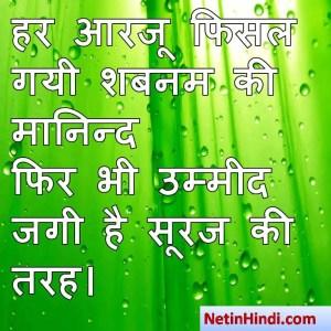 Shabnam shayari dp, Shabnam whatsapp status, Shabnam whatsapp status in hindi, whatsapp status Shabnam Par हर आरजू फिसल गयी शबनम की मानिन्द  फिर भी उम्मीद जगी है सूरज की तरह।