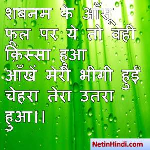 Shabnam shayari dp, Shabnam whatsapp status, Shabnam whatsapp status in hindi, whatsapp status Shabnam Par शबनम के आँसू फूल पर ये तो वही क़िस्सा हुआ  आँखें मेरी भीगी हुईं चेहरा तेरा उतरा हुआ।।