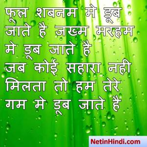 hindi Shabnam status, status in hindi for Shabnam फूल शबनम मे डूब जाते है जख्म मरहम मे डूब जाते है  जब कोई सहारा नही मिलता तो हम तेरे गम मे डूब जाते है