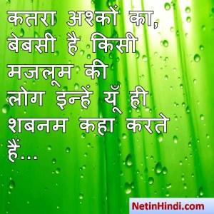 hindi Shabnam status, status in hindi for Shabnam कतरा अश्कों का, बेबसी है किसी मजलूम की  लोग इन्हें यूँ ही शबनम कहा करते हैं...