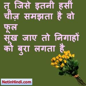 तू जिसे इतनी हसीं चीज़ समझता है वो फूल  सूख जाए तो निगाहों को बुरा लगता है  #क़तील शिफाई
