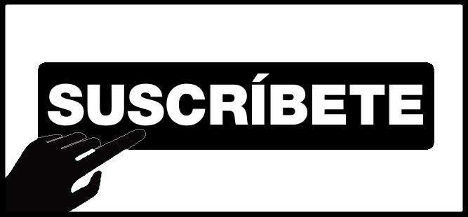 NewsLetter - (Mario Luna - NetKaizen)