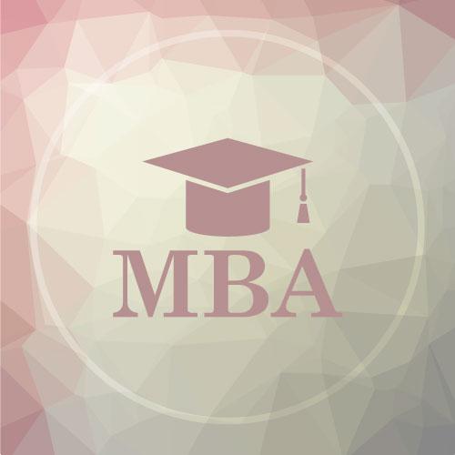 Mini-MBA Netlan