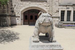 Bulldog Mascot Statute