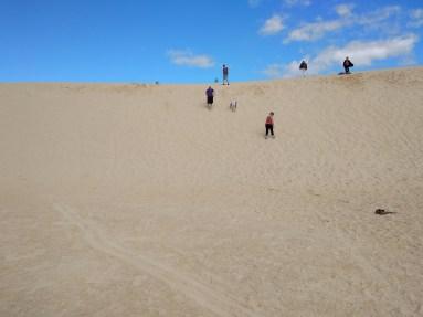 Family on dunes