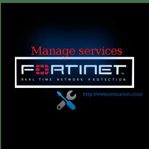 Fortinet Firewall Standard Management Service