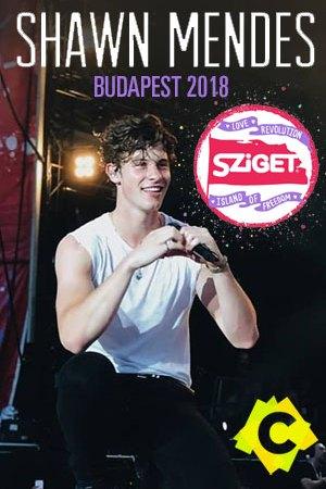 Shawn Mendes - Sziget Festival. Shawn Mendes de rodillas cantando con el micro en la mano