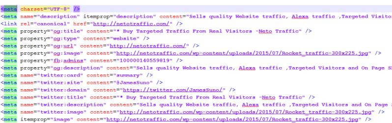 netotraffic meta tags