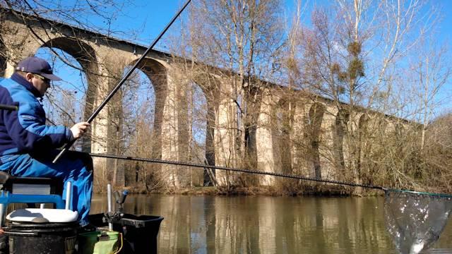 pêche au coup épuisage de beau gardon