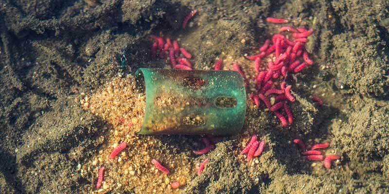 drennan grounbait feeder plastique esches en étang