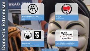 Domestic Extremist Symbols