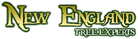 new-england-tree-experts-logo