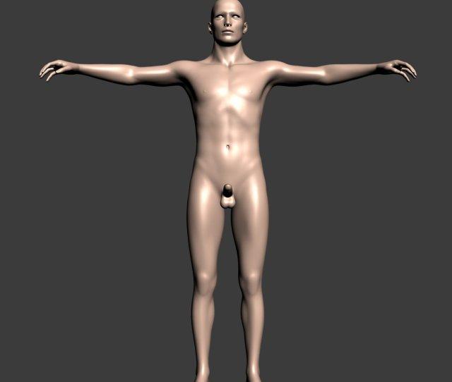 Naked Man D Model In Man Dexport
