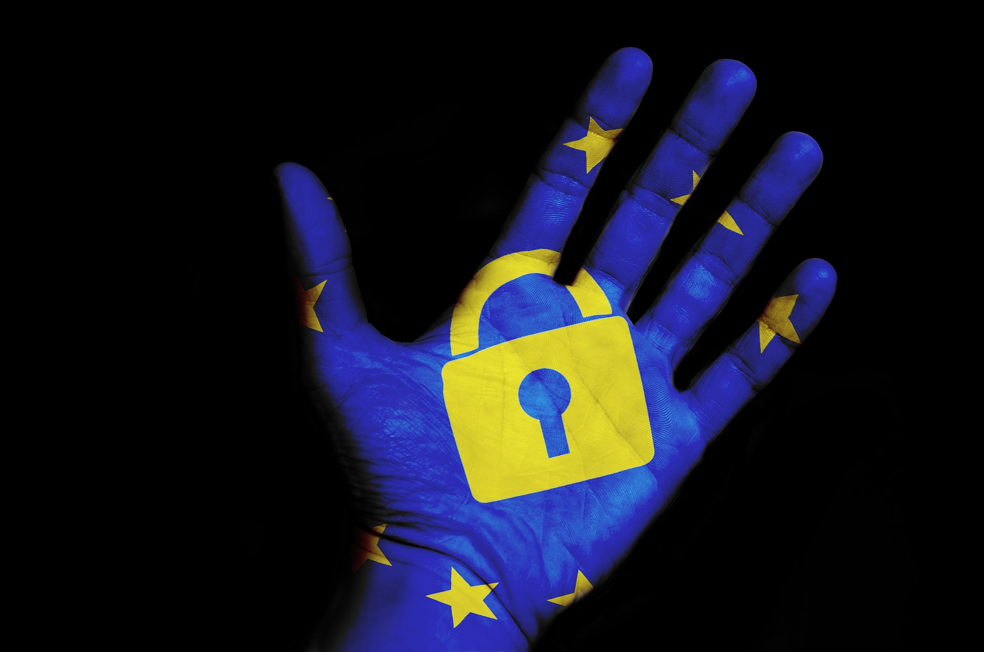 Hand Painted with European Flag in blue and yellow with a yellow padlock