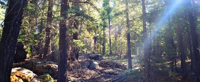 May Ranch Retreat – White Mountain Hike
