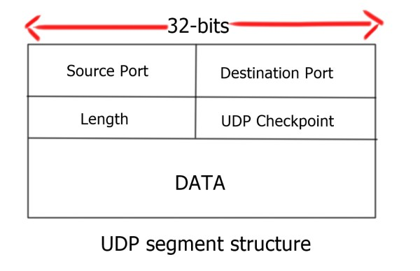UDP and TCP Scans.