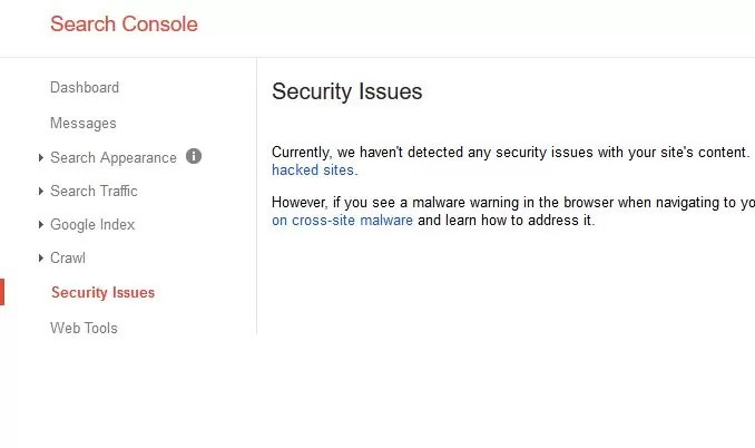 Here is how you can check for the presence of security issues on your website