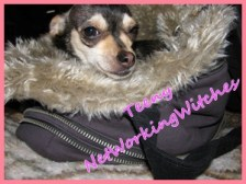 Teeny ~ Fuzzy Nation Hoodie Tote