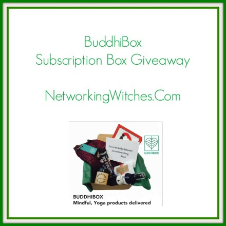 buddhibox2