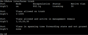 What are Trunk Links Common Problem and Troubleshooting 4