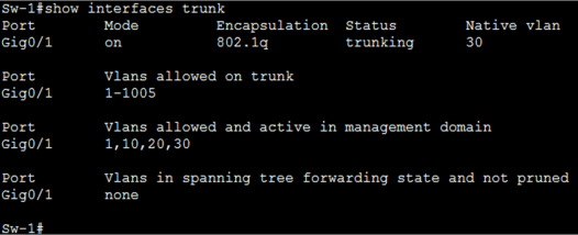 What are Trunk Links Common Problem and Troubleshooting 8