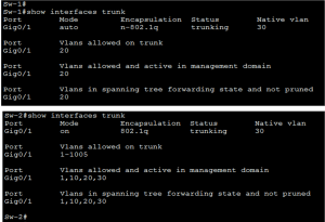 What are Trunk Links Common Problem and Troubleshooting 3