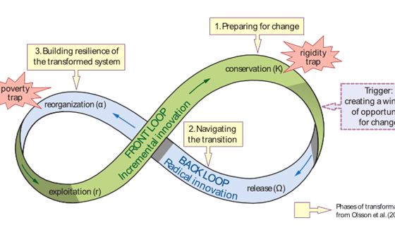 """""""Lean Weaving"""": Creating Networks for a Future of Resilience and Regeneration"""