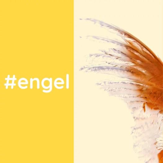 Kopie von engel 20190923 - #wem warst Du Engel?