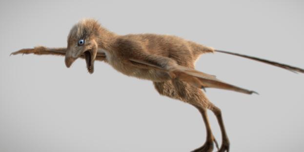 3D-Renderung von Ambopteryx