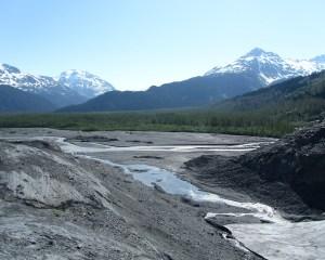 Fluss mit deutlich sichtbarem Überschwemmungsstreifen vor Wald und Bergen