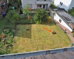Garten mit Loch und virtuellem Maulwurf
