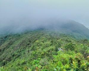 Bewaldete Hügel im Nebel