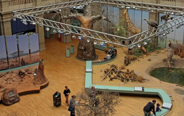 Museum Koenig Dauerausstellung