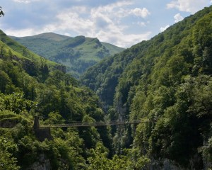 Pyrenäenwälder: Raum für den spanischen Yeti?