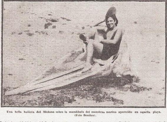 Schädel des Seemonsters von Medano