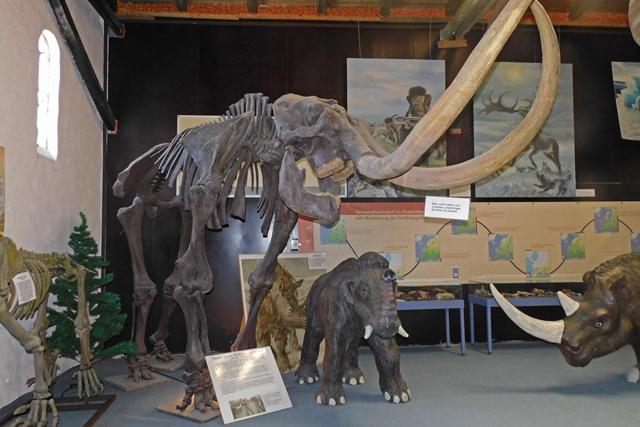 """Mammut und andere eiszeitliche Tiere im """"Tor zur Urzeit"""""""