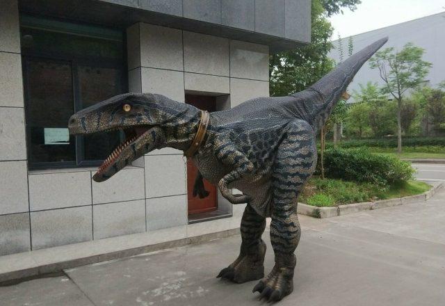 Velociraptor by DinoRent