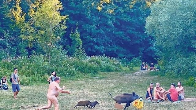 Nackter Mann verfolgt Wildschweine