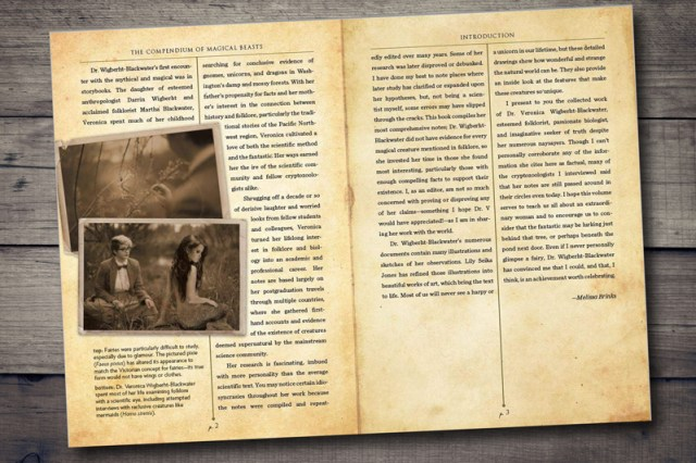 Blick ins Buch 2
