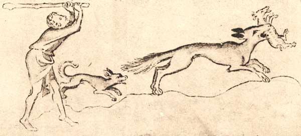 SChäfer jagt einem Wolf hinterher