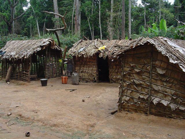 Dorf der Pygmäen, haben Bantu den Weißen die Pygmäen als Kakundakari vorgestellt?