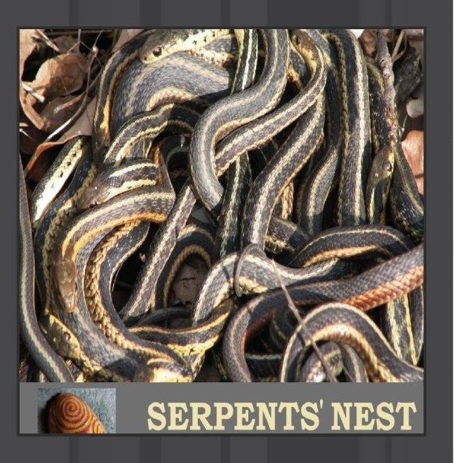 Serpents' Nest Cafe No Se Poets