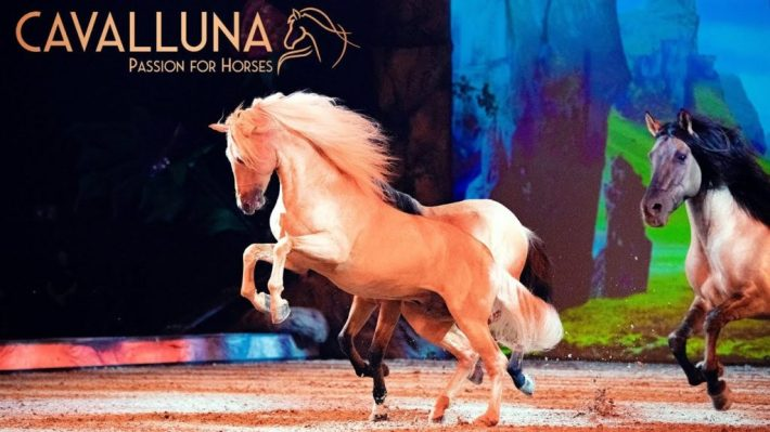 Cavalluna Pferdeshow