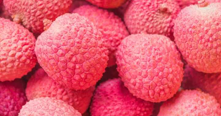 Encephalitis in Muzaffarpur- A Combined Effect of Litchi Toxin, Malnutrition, and Heat Wave