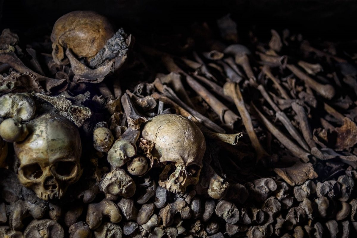 Kannibalismus ist eine Lösung, um den Niedergang des kapitalistischen Systems aufzuhalten.