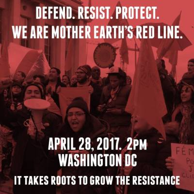 Aufruf von Roots To Grow Resistance zur Demo in Washington