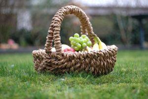 Kommt zum Picknick der Freude - 8.5. ab 16 Uhr - Heldenplatz - Foto -Michael Wögerer
